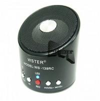 MINI HI-FI CASSA SPEAKER RADIO FM RICARICABILE MP3 MP4 PC MAC USB WS-139RC mshop